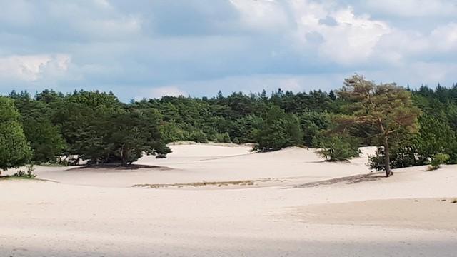 Zandvlakte - inspiratie om te schrijven