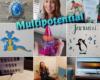 Ben ik een multipotential?